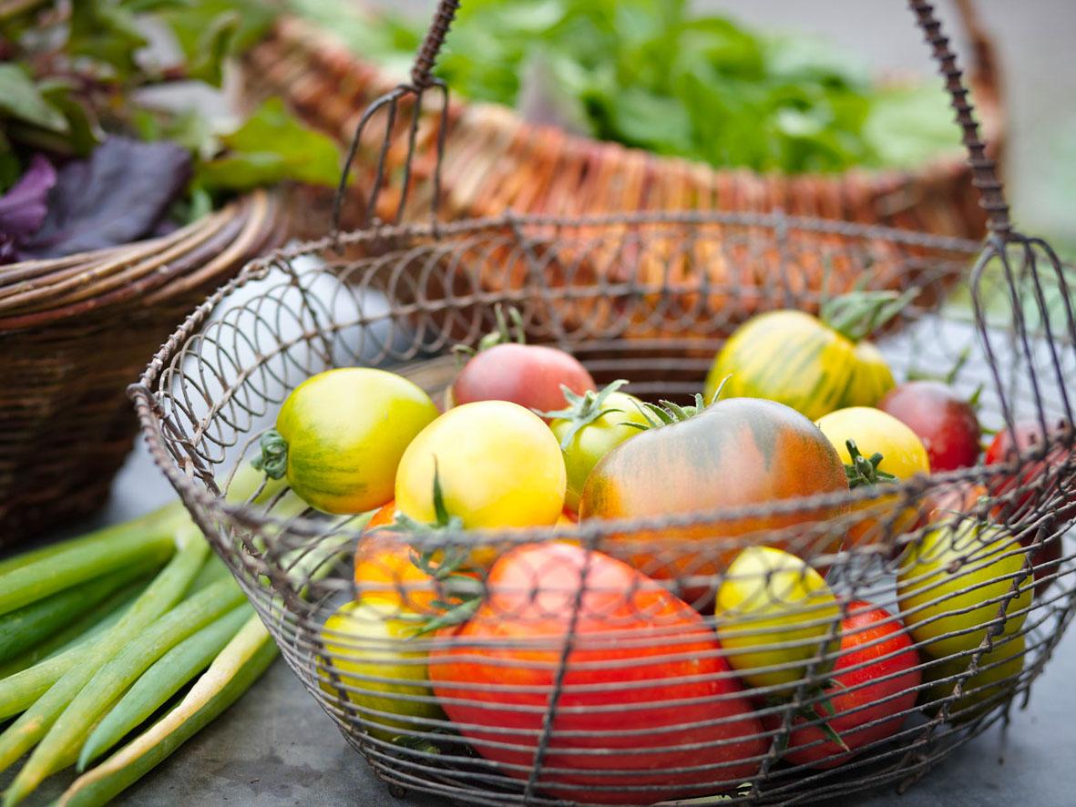 Garten und Gabel culture essen