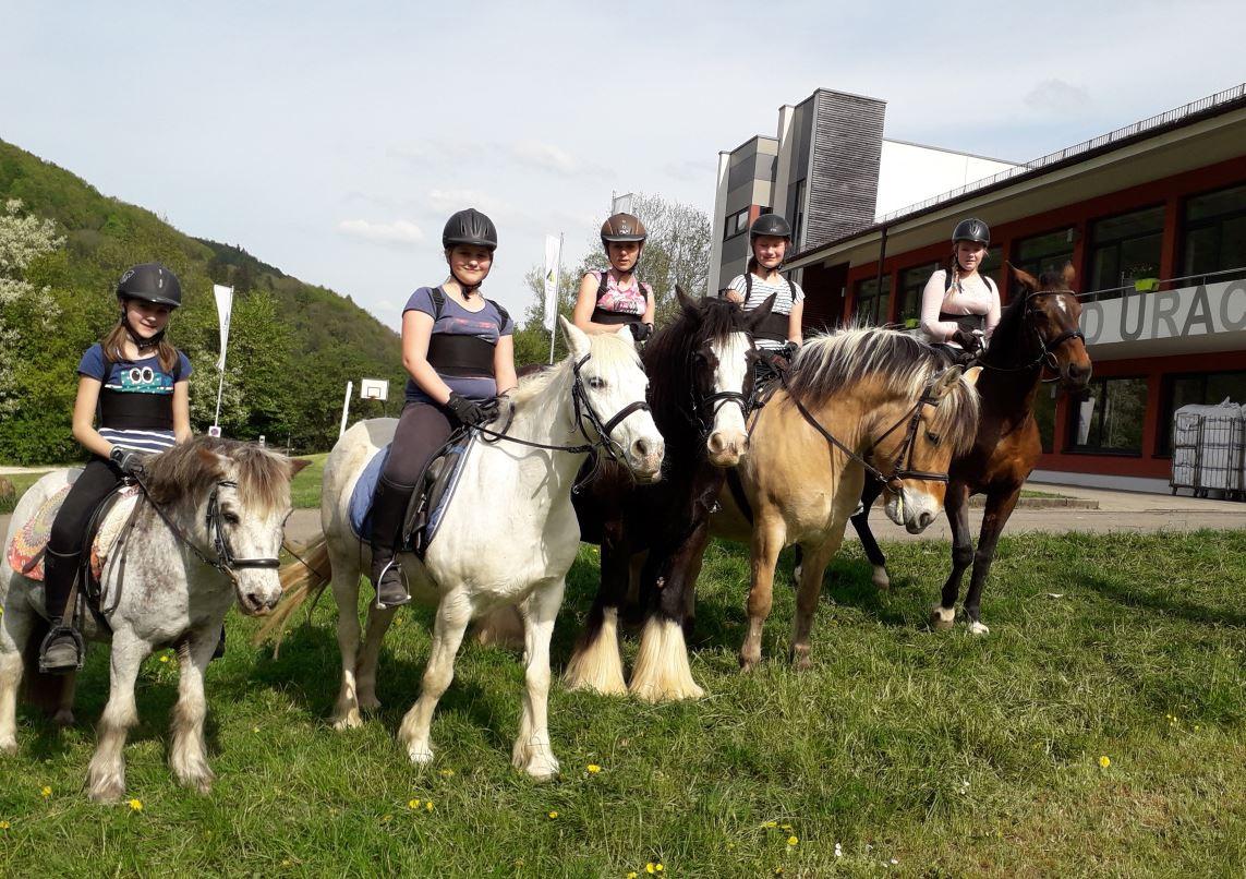 Reiterferien in Bad Urach